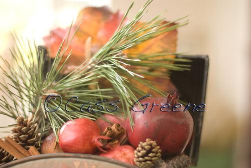 2008-11-01 04-53-34 PM DSC_8197A