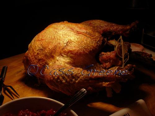 Turkey DSC06896 copy