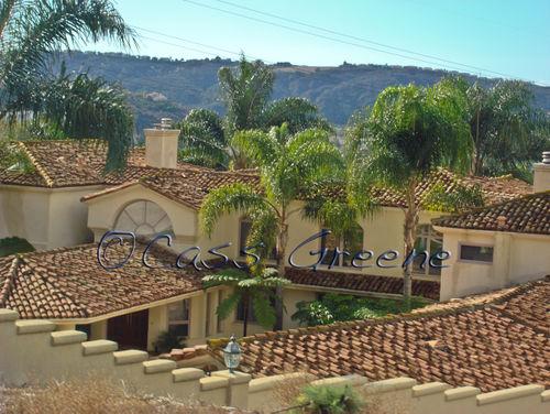 Tile Roof DSC07069 copy