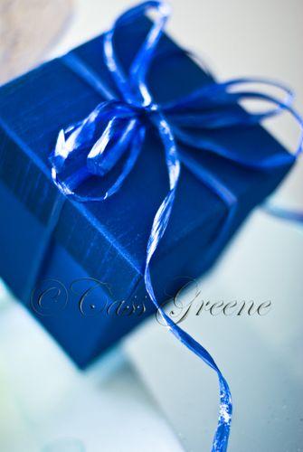 Blue Box DSC2838 copy