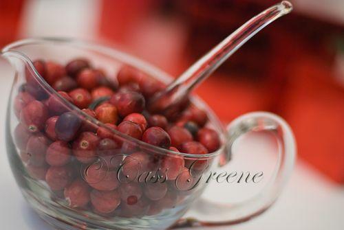 Cranberries DSC_1600 copy