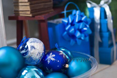 Blue Bowl DSC2842 copy