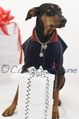 Q It's mine Gifts DSC3770_1 copy
