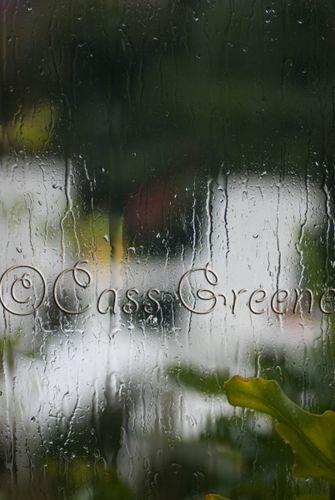 Rainy Day DSC_5610