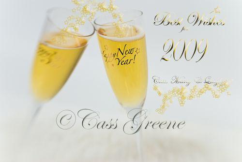 New Year 2009 DSC_6895 copy