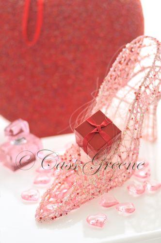 Red Slipper 2009-01-25 01- copy