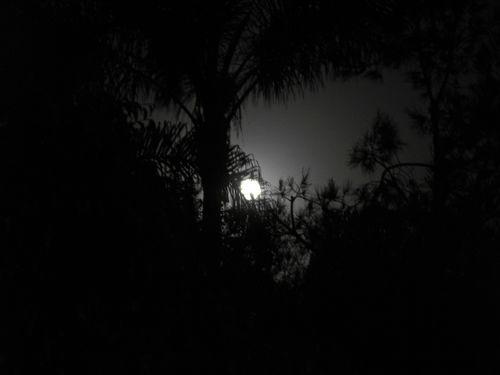Moon 1921
