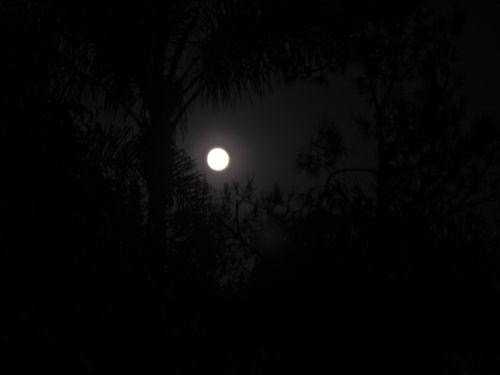 Moon 1934