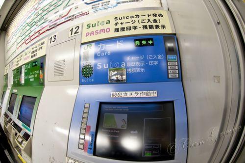 2010_10_22 05.49.15 PM _CAS1310