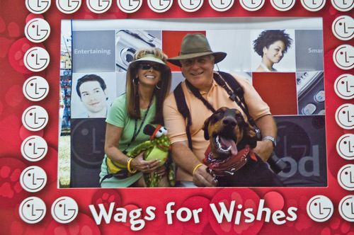 Wags for Wishes 8.3.2007
