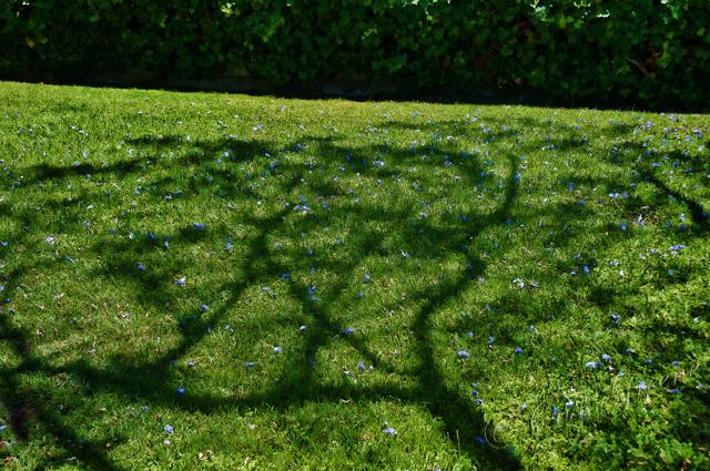 2010-05-18 01-06-38 PM _CAS9796